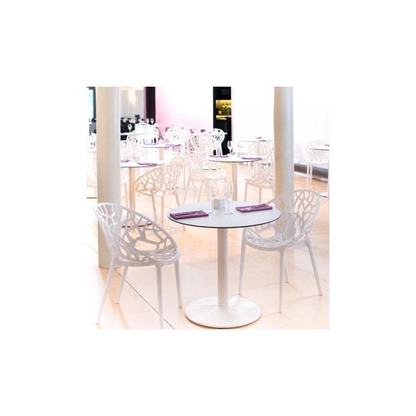 vendita sedia policarbonato TRAFORATE ,POLTRONE impilabili da esterno,sedie bar,occasione sedie ...