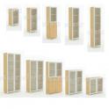Armadio ufficio in legno con ante in vetro